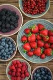 不同的新鲜的夏天莓果 库存图片