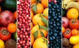 不同的果子和莓果的混合 背景许多饺子的食物非常肉 免版税图库摄影