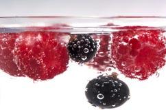 不同的浆果 库存照片