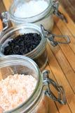 不同的海盐品种  免版税库存图片