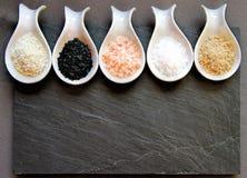 不同的海盐品种  免版税库存照片