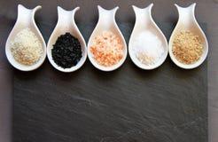 不同的海盐品种  库存图片