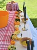 不同的种类与蜡烛的南瓜 免版税库存照片