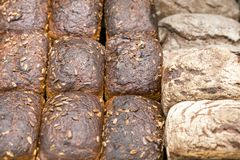 不同的种类新近地被烘烤的黑面包  免版税库存照片
