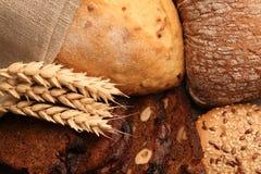 不同的种类的分类面包 免版税库存照片