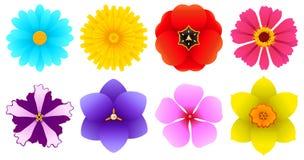 不同的种类花-顶视图 皇族释放例证