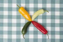 不同的种类在桌上的辣椒 图库摄影
