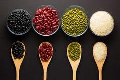 不同的种类豆 库存图片