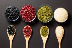 不同的种类豆 免版税图库摄影