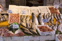不同的种类钓鱼待售在一个市场上在巴勒莫 免版税库存图片
