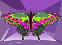 从不同的色的宝石的蝴蝶:红宝石,绿宝石 免版税图库摄影