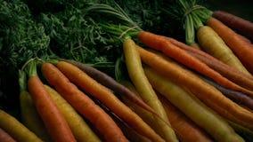 不同的色的新鲜的红萝卜 股票视频
