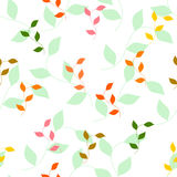 不同的色的秋叶的无缝的样式 免版税图库摄影