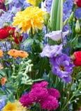 不同的花明亮的多色花束  免版税库存图片