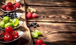 不同的莓果匙子 在木背景 免版税库存图片