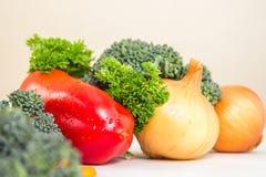 不同的菜和新鲜的草本与waterdrops在白色桌上 荷兰芹和绿色硬花甘蓝 库存图片