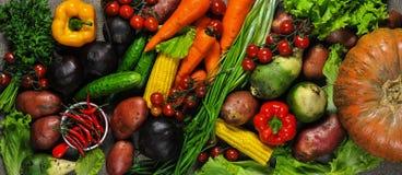 不同的蔬菜 库存照片