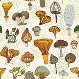 不同的蘑菇的无缝的样式 免版税库存照片