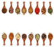 不同的调味料和香料在木匙子 库存照片