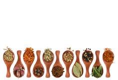 不同的调味料和香料在木匙子 免版税库存照片