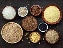 不同的谷物和种子的分类在碗:麦子,燕麦,大麦,米,小米,荞麦,玉米 免版税图库摄影