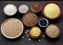 不同的谷物和种子的分类在碗:麦子,燕麦,大麦,米,小米,荞麦 免版税库存照片