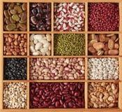 不同的豆 免版税图库摄影
