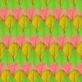 不同的颜色叶子的无缝的样式  图库摄影