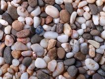 不同的颜色小海小卵石背景  库存照片