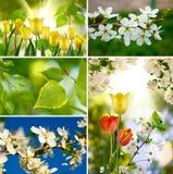 不同的颜色的图象 免版税库存照片