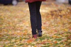不同的颜色腿鞋子  免版税库存图片