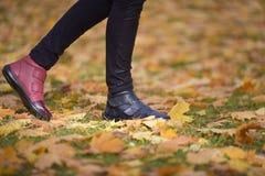 不同的颜色腿鞋子  库存图片