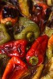 不同的颜色被烘烤的甜椒与菜油和草本的在烤板 库存照片