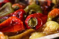 不同的颜色被烘烤的甜椒与菜油和草本的在烤板 库存图片