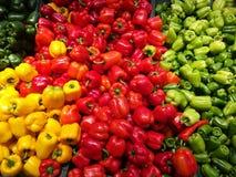 不同的颜色辣椒的果实  库存照片
