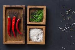 不同的香料和辣椒在木箱在黑暗的背景,顶视图,拷贝空间 库存照片