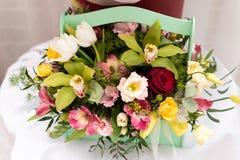 不同颜色美丽的花束  库存图片