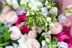 不同颜色美丽的花束  免版税图库摄影