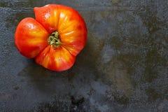 不完美的有机蕃茄 免版税库存图片