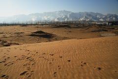 不尽的沙漠 库存图片