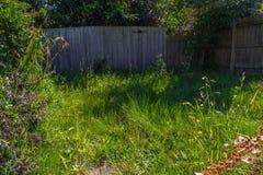 不整洁的庭院3 库存图片