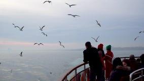 不明身份的人民哺养的海鸥用从轮渡,伊斯坦布尔,土耳其的饼干 股票视频