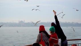 不明身份的人民哺养的海鸥用从轮渡,伊斯坦布尔,土耳其的饼干 股票录像