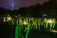 不眠夜-当代艺术节日在布拉索夫,斯洛伐克, 库存照片