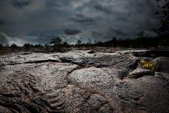 不祥的熔岩荒野 库存照片