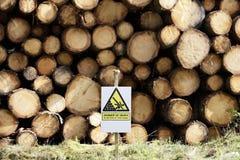 不要上升在切好的木日志堆积了危险标志的危险在森林森林地 免版税库存照片