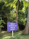 不要喂养猴子签到英语在密林背景前面 库存图片