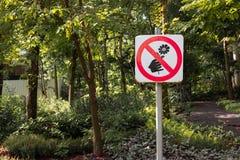 不要拉扯花签到公园 库存图片