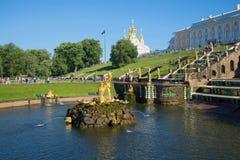 不运作的看法森山喷泉7月晚上 Peterhof大喷泉小瀑布  彼得斯堡圣徒 库存图片