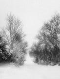 不通的积雪的路在冬天 免版税库存照片